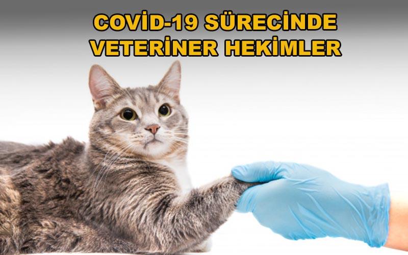 Covid-19 Sürecinde Veteriner Hekimler