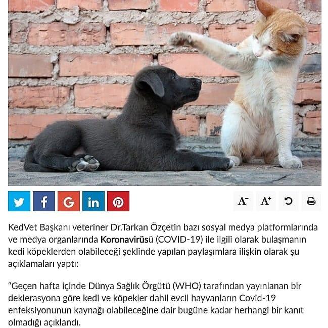 Başkanımız Tarkan Özçetin'in Yurt Gazetesi'ne verdiği röportaj