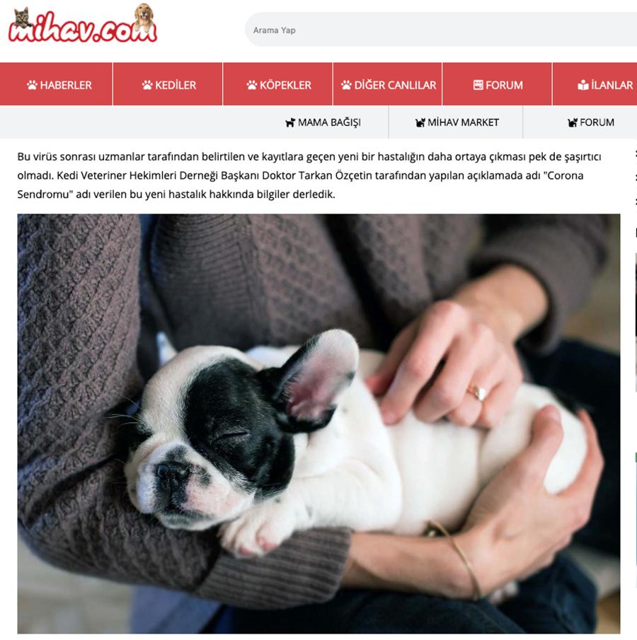 Corona Virüs Sendromunun Çözümü: Evcil Hayvanlar