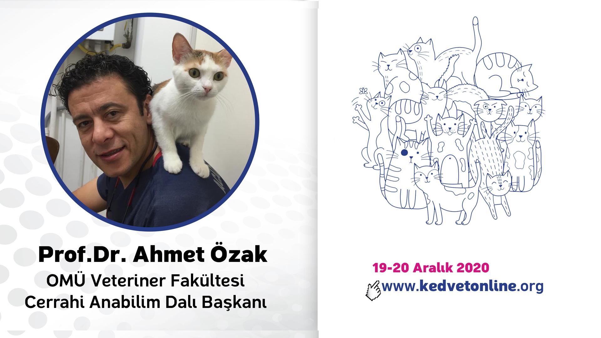 Uluslararası Online Kedi Hekimliği Kongresi